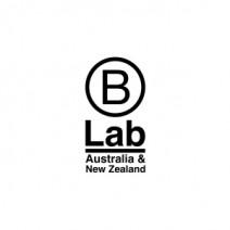 B Lab_sq
